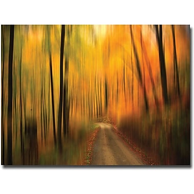 Trademark Global Philippe Sainte Laudy in.Welcome to My Fallin. Canvas Art, 30in. x 47in.