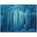 Trademark Global Philippe Sainte Laudy in.Jellyfish Icein. Canvas Art, 30in. x 47in.