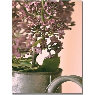 Trademark Global Philippe Sainte Laudy in.Lilac IIin. Canvas Art, 22in. x 32in.