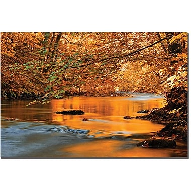 Trademark Global Philippe Sainte Laudy in.Fluidityin. Canvas Art, 30in. x 47in.