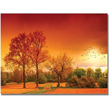 Trademark Global Philippe Sainte Laudy in.Orange Worldin. Canvas Arts
