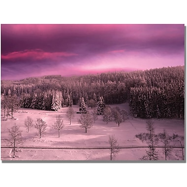 Trademark Global Philippe Sainte Laudy in.Rose Timein. Canvas Art, 30in. x 47in.