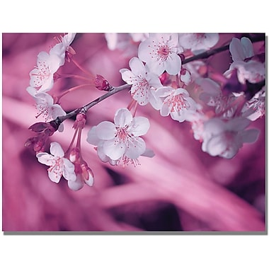 Trademark Global Philippe Sainte Laudy in.Spring Timein. Canvas Art, 22in. x 32in.