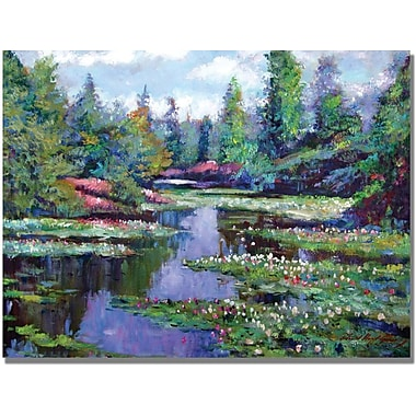 Trademark Global David Lloyd Glover in.Summer Waterlilliesin. Canvas Arts
