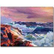 "Trademark Global David Lloyd Glover ""Surf Crashes"" Canvas Art, 18"" x 24"""