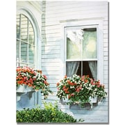 "Trademark Global David Lloyd Glover ""Window Boxes"" Canvas Art, 35"" x 47"""