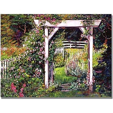 Trademark Global David Lloyd Glover in.Botanical Paradisein. Canvas Art, 35in. x 47in.