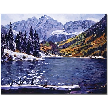 Trademark Global David Lloyd Glover in.Rocky Mountain Solitudein. Canvas Art, 18in. x 24in.