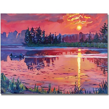 Trademark Global David Lloyd Glover in.Daybreak Reflectionin. Canvas Arts