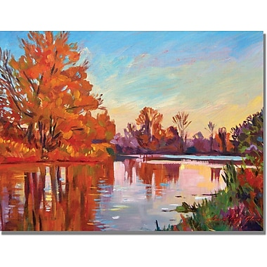 Trademark Global David Lloyd Glover in.Evening Serenityin. Canvas Arts