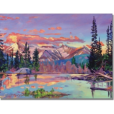 Trademark Global David Lloyd Glover in.Evening Serenityin. Canvas Art, 35in. x 47in.