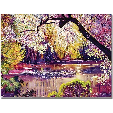 Trademark Global David Lloyd Glover in.Central Park Spring Pondin. Canvas Arts