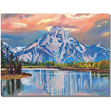 Trademark Global David Lloyd Glover in.Majestic Blue Mountainin. Canvas Arts