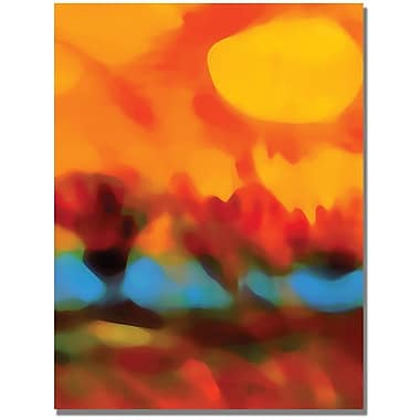 Trademark Global Amy Vangsgard in.Sunset in the Fieldsin. Canvas Art, 35in. x 47in.