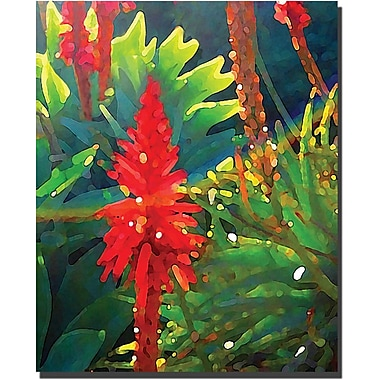Trademark Global Amy Vangsgard in.Backlit Aborescnsein. Canvas Art, 26in. x 32in.