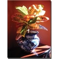 Trademark Global Amy Vangsgard in.Crotons in Talavera Potin. Canvas Art, 35in. x 47in.