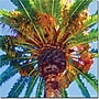 Trademark Global Amy Vangsgard palm Tree Looking Up