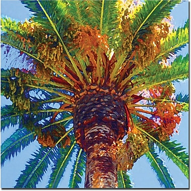 Trademark Global Amy Vangsgard in.Palm Tree Looking Upin. Canvas Art, 24in. x 24in.