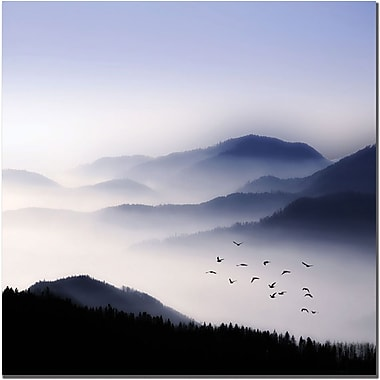 Trademark Global Philippe Sainte Laudy in.Flying Over the Fogin. Canvas Art, 18in. x 18in.