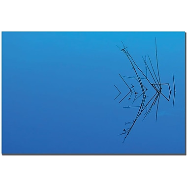 Trademark Global Philippe Sainte Laudy in.Japanesein. Less is More Canvas Art, 22in. x 32in.