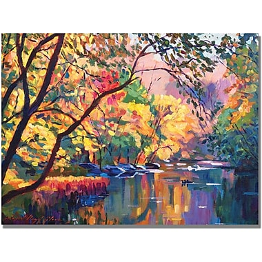 Trademark Global David Lloyd Glover in.Color Reflectionsin. Canvas Art, 35in. x 47in.