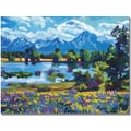 Trademark Global David Lloyd Glover in.Wildflower Valleyin. Canvas Art, 35in. x 47in.