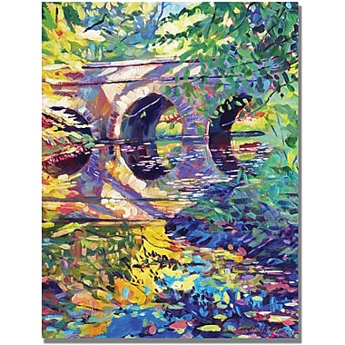 Trademark Global David Lloyd Glover in.Stone Footbridgein. Canvas Art, 35in. x 47in.