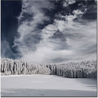 Trademark Global Philippe Sainte Laudy in.Snowy Skyin. Canvas Art, 35in. x 35in.