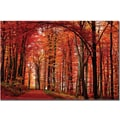 Trademark Global Philippe Sainte Laudy in.The Red Wayin. Canvas Art, 14in. x 19in.