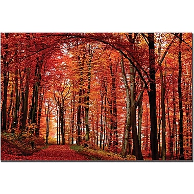 Trademark Global Philippe Sainte Laudy in.The Red Wayin. Canvas Art, 30in. x 47in.