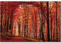 Trademark Global Philippe Sainte Laudy 'The Red Way' Canvas Art, 16' x 24'