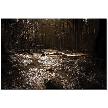 Trademark Global Philippe Sainte Laudy in.The Riverin. Canvas Art, 30in. x 47in.