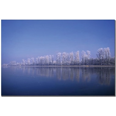 Trademark Global Philippe Sainte Laudy in.White Linein. Canvas Art, 16in. x 24in.