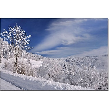 Trademark Global Philippe Sainte Laudy in.White Worldin. Canvas Art, 30in. x 47in.