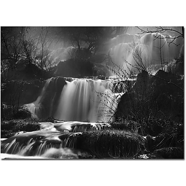 Trademark Global Philippe Sainte Laudy in.Black and Waterin. Canvas Art, 30in. x 47in.