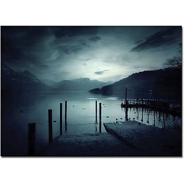 Trademark Global Philippe Sainte Laudy in.Blackoutin. Canvas Art, 30in. x 47in.