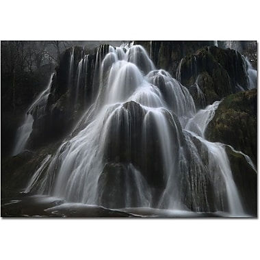 Trademark Global Philippe Sainte Laudy in.Ode to Elvesin. Canvas Art, 30in. x 47in.