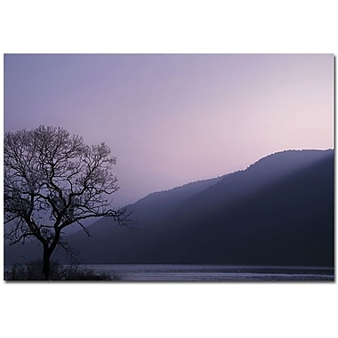 Trademark Global Philippe Sainte Laudy in.Purple Hoursin. Canvas Arts