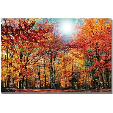 Trademark Global Philippe Sainte Laudy in.Camouflagein. Canvas Art, 22in. x 32in.
