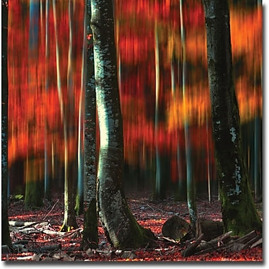 Trademark Global Philippe Sainte Laudy in.Fall Visionin. Canvas Art, 18in. x 18in.