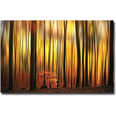 Trademark Global Philippe Sainte Laudy in.Firewallin. Canvas Art, 30in. x 47in.