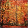 Trademark Global Philippe Sainte Laudy in.Red Novemberin. Canvas Art, 18in. x 18in.