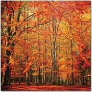 Trademark Global Philippe Sainte Laudy Red November Canvas Art, 18 x 18