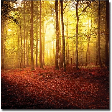 Trademark Global Philippe Sainte Laudy in.The Smell of Autumnin. Canvas Arts