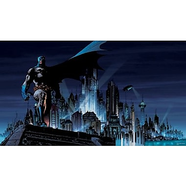 RoomMates® Batman™ Chair Rail Prepasted Wall Mural, 6 ft H x 10 1/2 ft W
