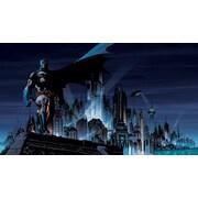 RoomMates® Batman™ Chair Rail Prepasted Wall Mural, 6 ft H x 10 1/2 ft W