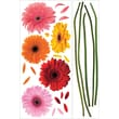 """RoomMates® Gerber Daisies Peel and Stick Wall Decal, 40"""" x 18"""", 40"""" x 9"""""""