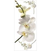 RoomMates® White Orchid Peel and Stick Giant Wall Decal, 18 x 40