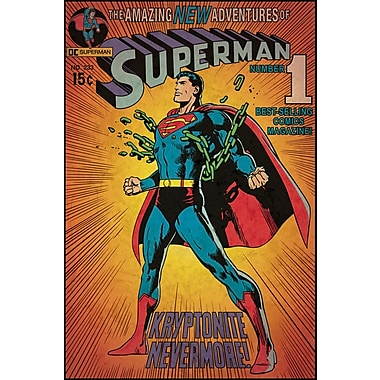 RoomMates® Superman™ Kryptonite Comic Cover Peel and Stick Giant Wall Decal, 27in. x 40in.