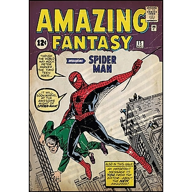 RoomMates® Spider Man Issue #1 Comic Cover Peel and Stick Giant Wall Decal, 27in. x 40in.